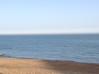 eastbourne swimmers